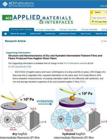 blog - nanotools AFM probes